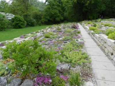 Freising. Jardin de Weihenstephan (8). Jardin alpin